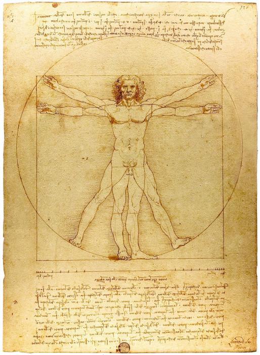 Proportionsstudie nach Vitruv: Mann mit vier Armen und Beinen