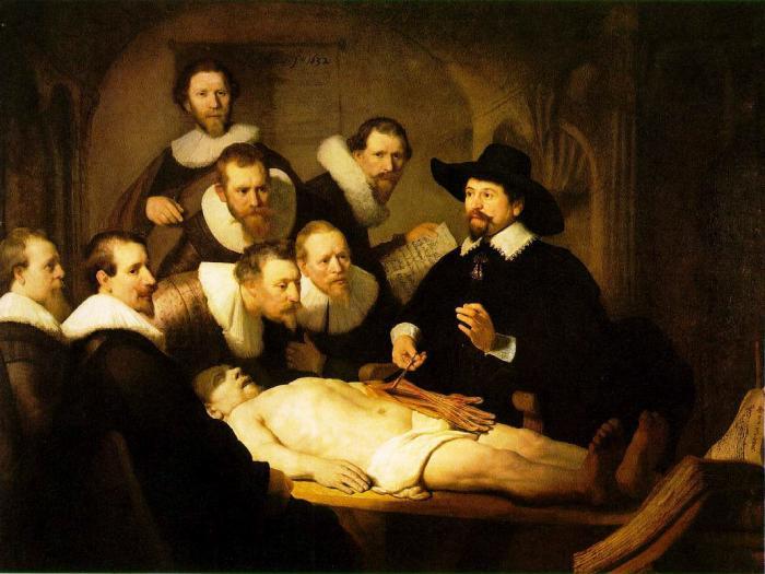 Die Anatomie Vorlesung Des Dr Tulp